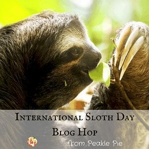 International Sloth Day badge